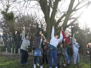 Roydon pupils leaping up to reach their tree